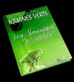 L'Alimentation des Iguanes Verts